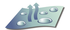 bnp-logo-atmungsaktiv-2